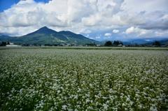 実りの秋へ  ~ 磐梯山と蕎麦畑 ~ 2