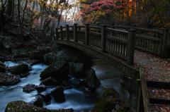 滝川の秋 4