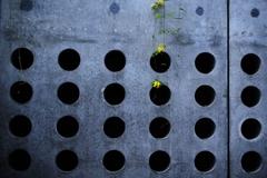 Future holes