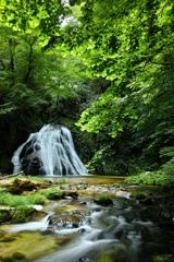 新緑片鞍滝  4  ~ 緑に癒されて ~