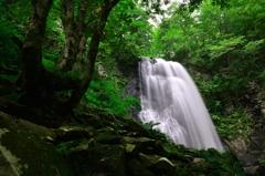 故郷滝廻り ~ 小野川不動滝 ~ 6