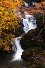 秋彩下滝 1