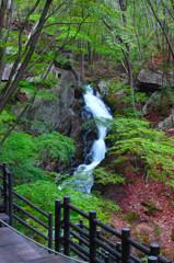 春の滝川 ~新緑の銚子~
