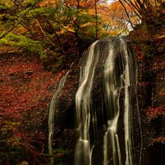 晩秋 紅の美女滝 二