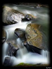 山鶏渓谷 初夏の色彩 九 ~輝くカメ岩~
