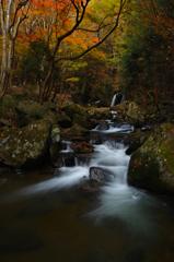 滝川の秋 2