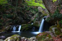 春の滝川 ~新緑おぼろ滝~