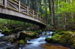 春滝川 ~癒しの橋~