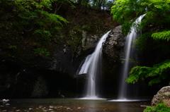新緑 月待の滝