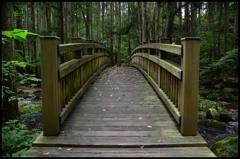 この橋を渡れば 2