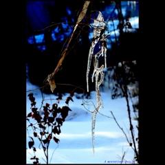 A mysterious icicle ~不可解な氷柱~