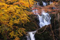 秋彩下滝 2