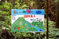 癒しの渓谷 十三 ~美しい緑 100年先も守ろうよ!!~