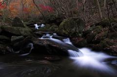 滝川の秋 5