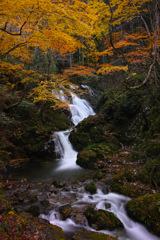 秋彩下滝 3
