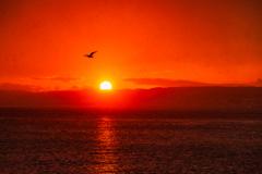 北風と太陽 I