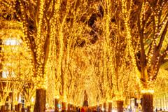 光溢れる街 III