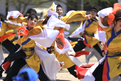 AOMORI春フェス2019 TXⅧ