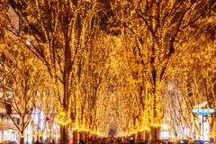 光溢れる街 IV