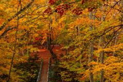橋の先の赤絨毯