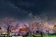 愛宕公園の夜