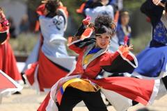 AOMORI春フェス2019 TXⅦ