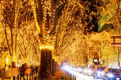 光溢れる街 VI