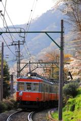 春の箱根 VII