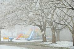 冬再び・桜吹雪