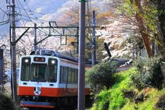 春の箱根 IX