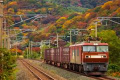 秋景色の青鉄 II