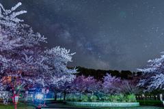 星空の愛宕公園