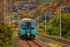 秋景色の青鉄 I