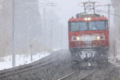 なごり雪 I -試写-
