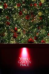 Merry Christmas V
