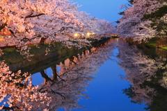 夜終桜 II