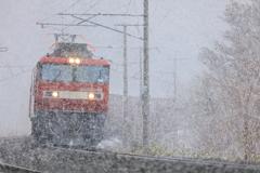 なごり雪 III -試写-