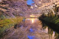 夜終桜 I