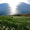 海原を眺めて...