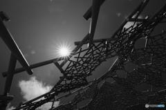 六甲枝垂れと太陽