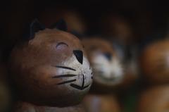 お土産屋のネコ