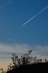 Blue sky ♯03