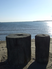 海を眺める二人❤