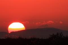 Melted Sun