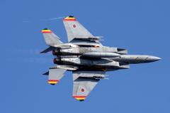 F15 記念塗装