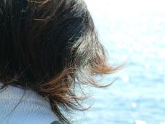 海風そよぐ