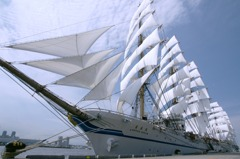 世界の風を受ける帆