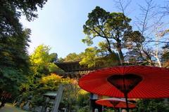 書写山円教寺2009 -2-