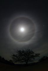 月輪 (がちりん)