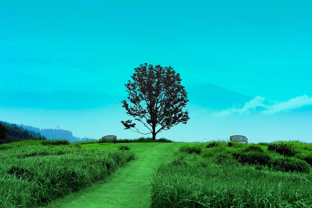 the Tree of Merhen